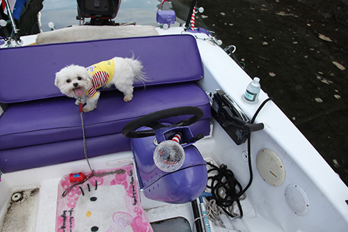 Melanie Griffith and Dakota Johnson Discuss Fifty Shades of Grey – Yachts O' Yuks Hollywood Royalty