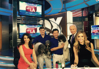 Olate Dogs FLIP for Good Day LA